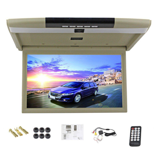 15 inch roof mount monitor.